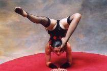 Numéro de contorsion