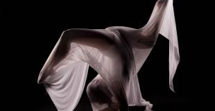Emma Richard, contorsionniste pour une soirée évènementielle (Belgique)